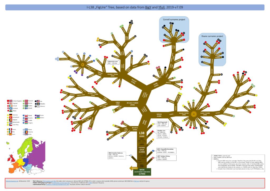 I-L38 - FigUre Tree - 2019-v7.09